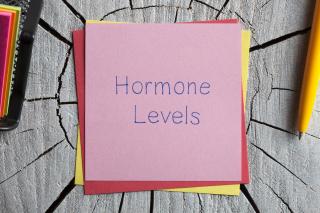 Hormone levels paper